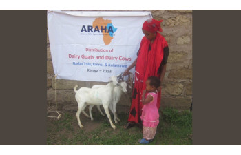 Dairy Goat image